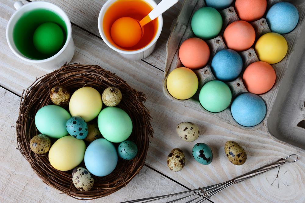 dye eggs    color bacteria thedailyflosscom
