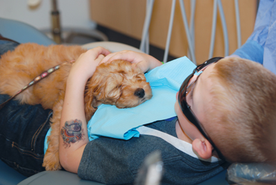 Chance Lawrence, 7, pets Nutmeg, a 10-week-old labradoodle and therapy dog-in-training, while sitting on a dental chair. Photo courtesy: ADA News