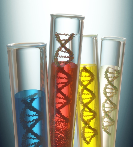 genetics_220449124