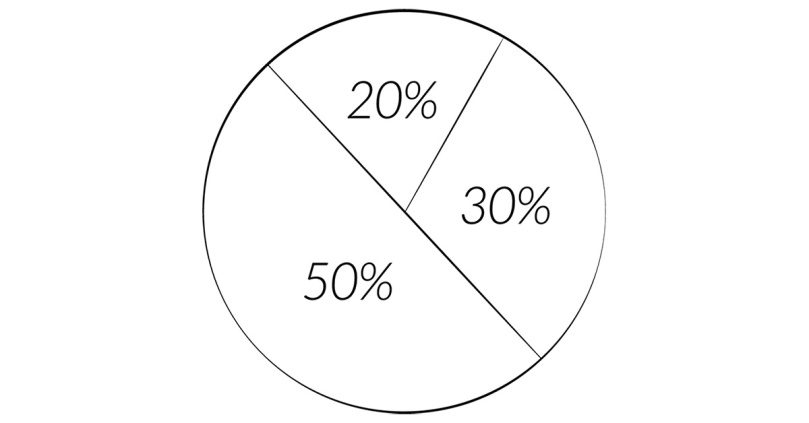 Image of the 50/30/20 Rule Chart in Pie Chart form.